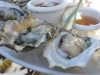 Otter Creek WA oysters