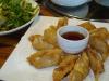 Mandu dumplings